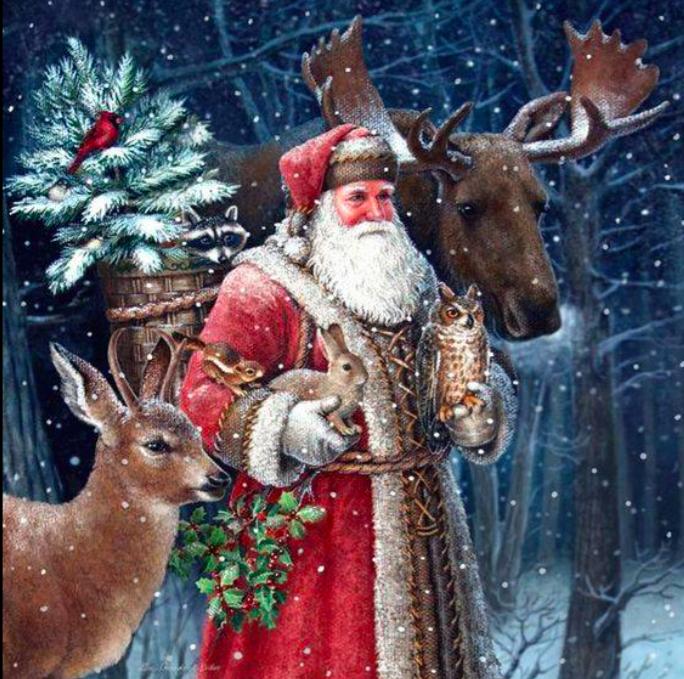 Sinn und Verstand des Weihnachtsmannes